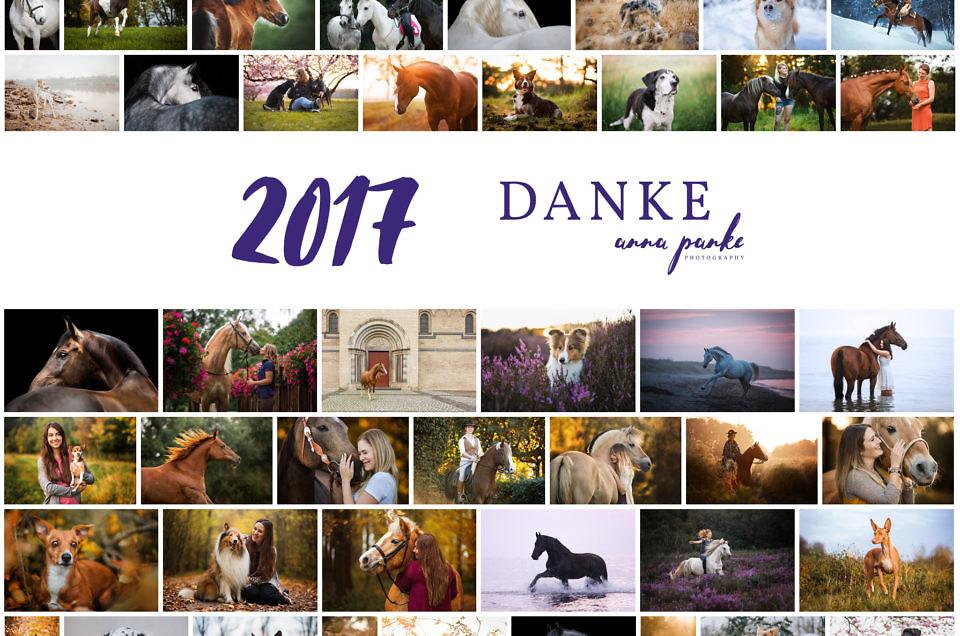 2017 - ein kleiner Jahresrückblick