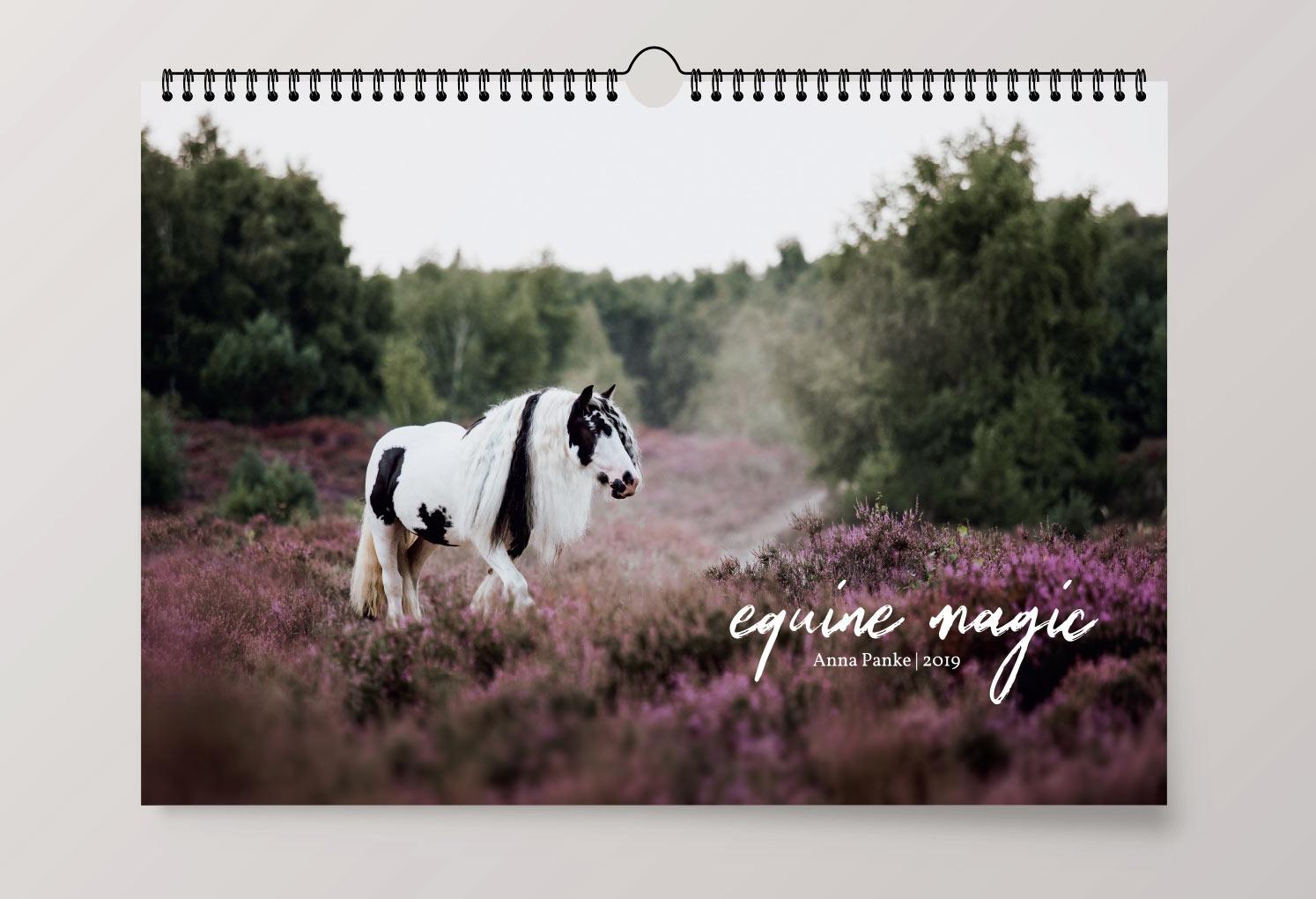 Pferdekalender 2019 - equine magic - Anna Panke - Pferdefotografin