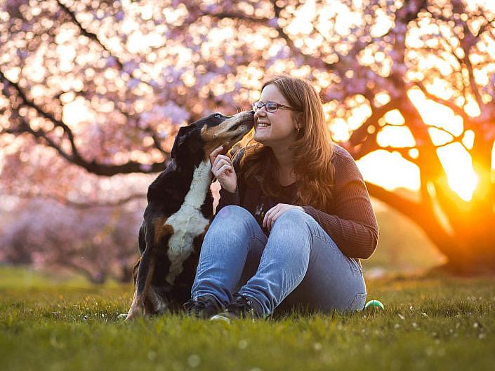 Kundenfotoshootings mit Hunden